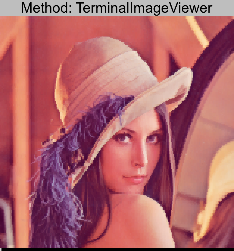 lenna.png converted using TerminalImageViewer
