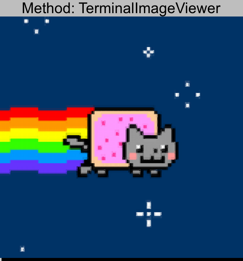 nyan.png converted using TerminalImageViewer
