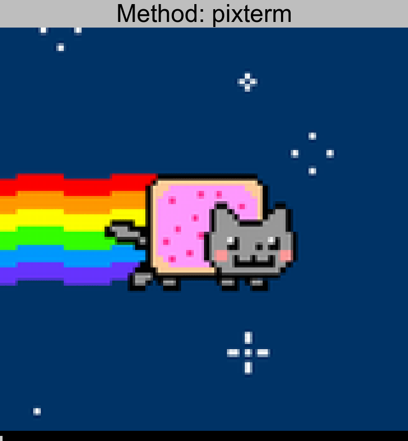 nyan.png converted using pixterm